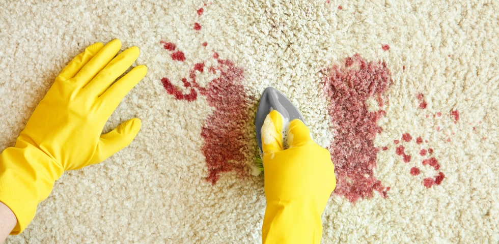 2. How to Remove Blood Stains