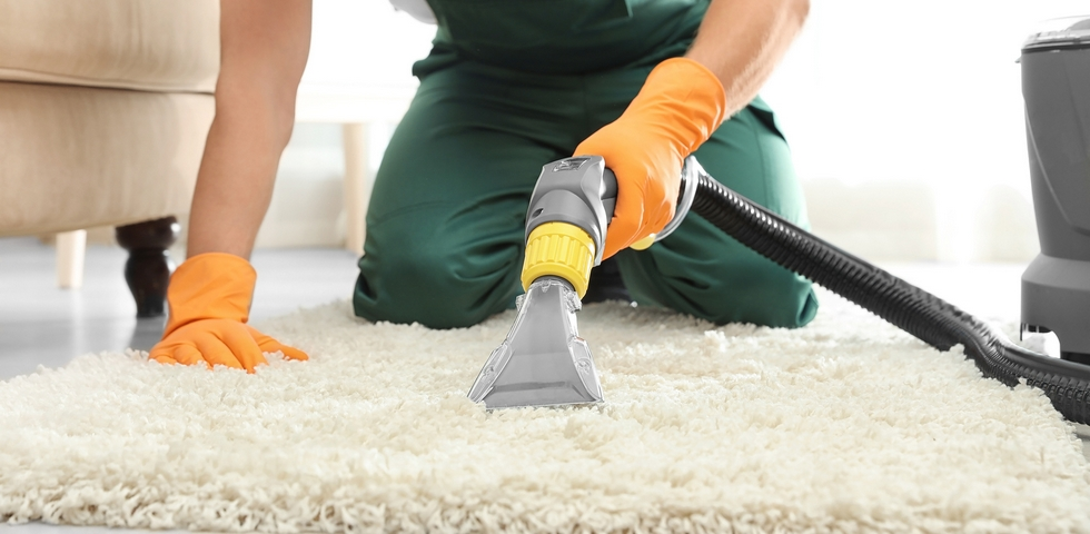 Hire a professional carpet cleaning company.